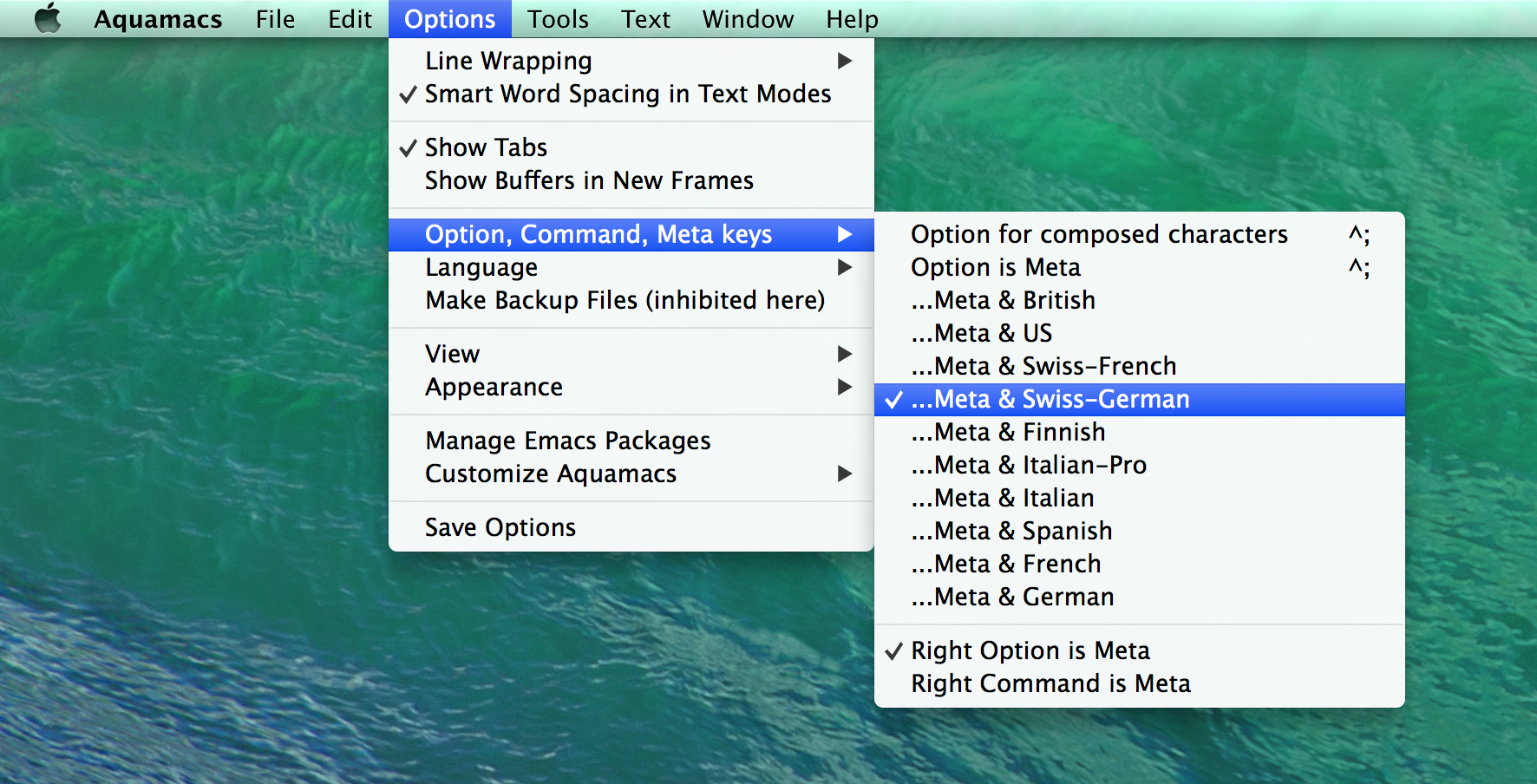 Figure 2: Aquamacs Meta Key Settings.